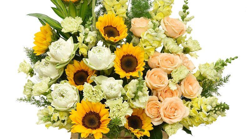 >>>>Xem thêm: Hoa chia buồn, Lãng hoa khai trương, Hoa sinh nhật Hãy Gọi Ngay ( Hoa Đẹp Rẻ Sang ) Giao Miễn Phí. Bạn Đang cần tìm shop hoa, hãy goi ngay shop nhé. Shop nhận giao hoa tận nơi miễn phí, có hóa đơn vat, dịch vụ điện hoa chuyên nghiệp.