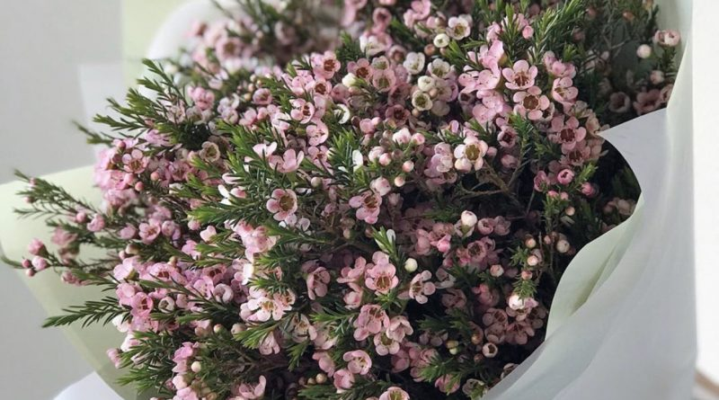Shop hoa tươi đẹp tại hà nội