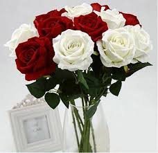 hoa tươi đẹp hà nội