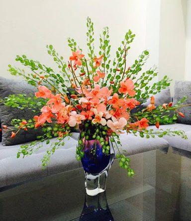 Mua hoa đẹp ở hà nội